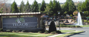 Tega Cay, South Carolina Homes for sale